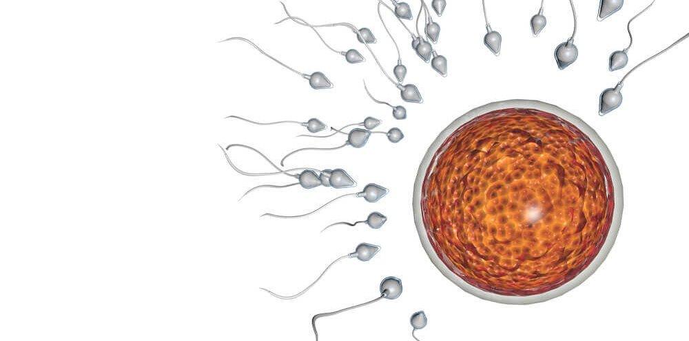 otehotnenie bez sexu